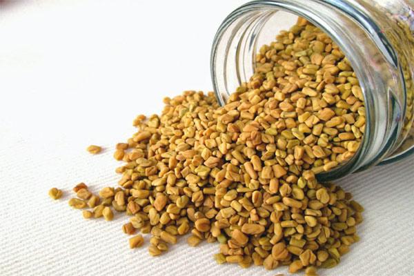 Health benefits of methi or fenugreek seeds