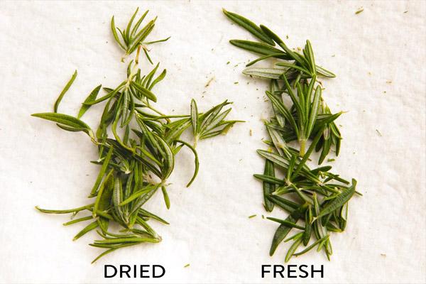 Rosemary herbs benefits