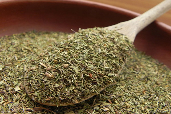 Thyme herb uses