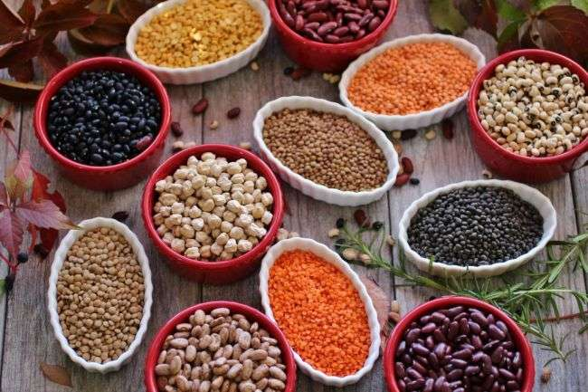 Best Beans for Health Benefits