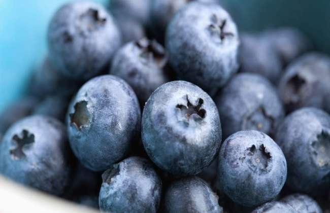 Blueberry Yogurt Health Benefits
