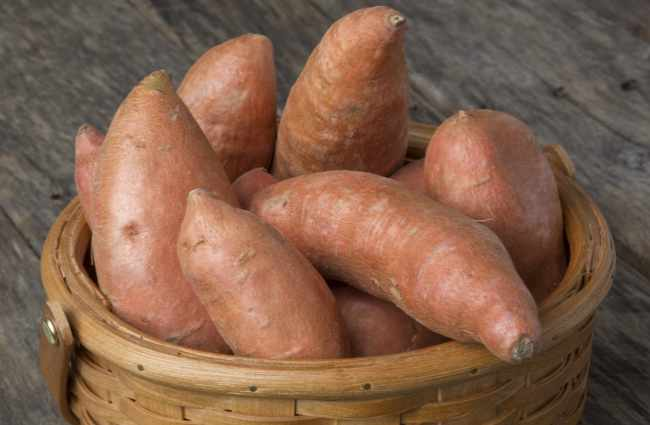 Sweet Potato Hormone Therapy
