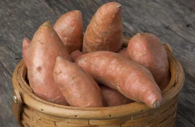 Sweet Potato Hormone Therapy