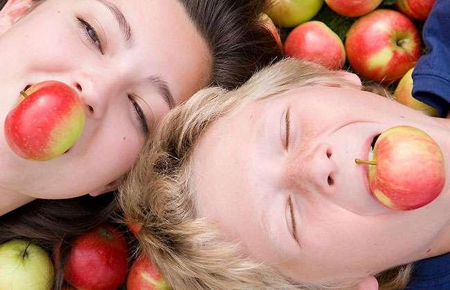 Apple Slices Calories