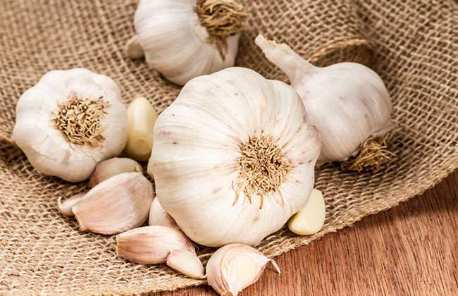 Garlic For Hair Removal