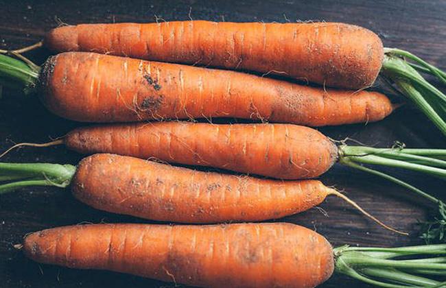 Do Carrots Have Fiber