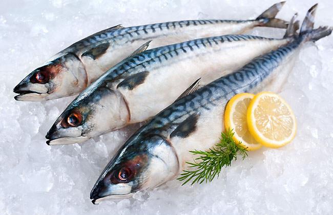 Mackerel Best For Skin
