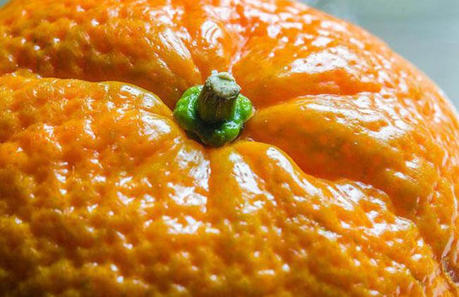 Orange Peel Skin On Chin