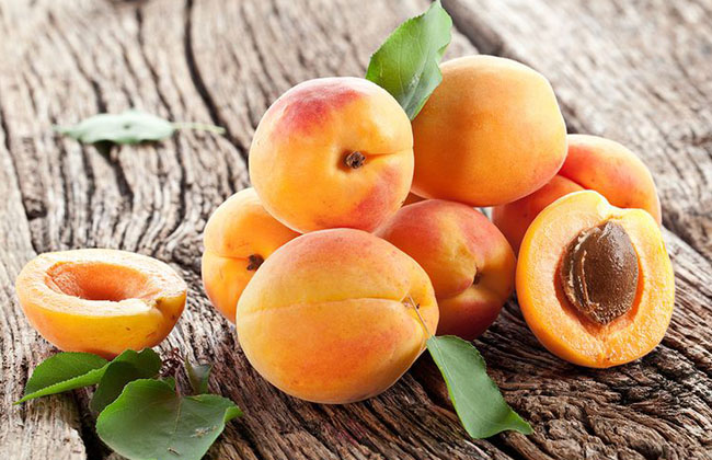 Fiber in Dried Apricots
