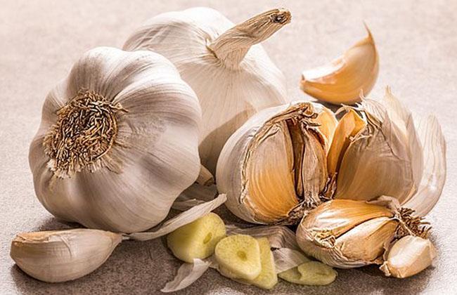 Garlic Cloves Health Benefits